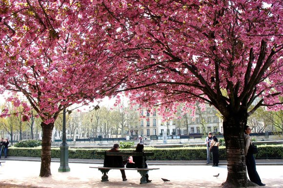 Image of Paris in the Spring